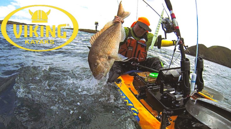 Hunting big snapper out of the kelp this winter